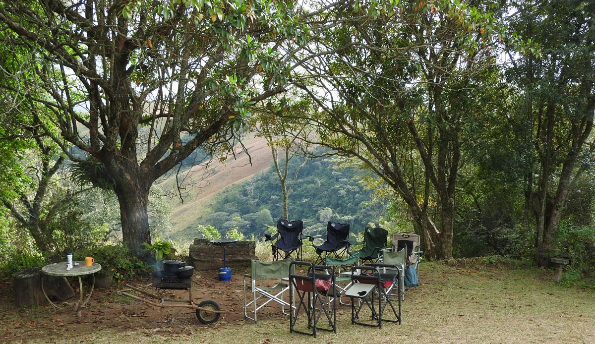picnic-in-Crimsonwing-garden-3